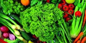 Какую пользу приносит зелень нашему организму