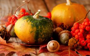 Щедрые дары осени: вся польза для организма